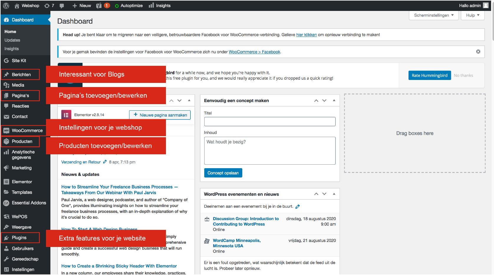 Dashboard Website in WordPress